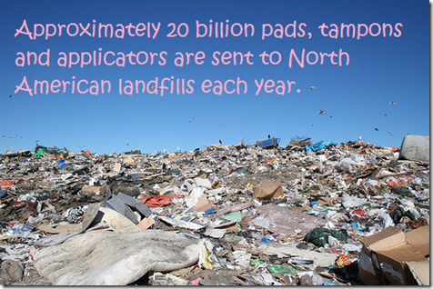 Tampons in Landfill