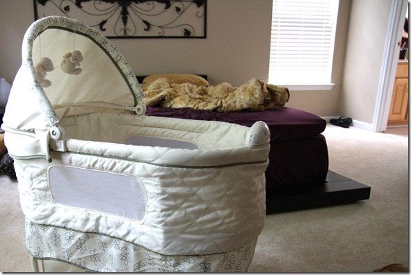IMG_9015
