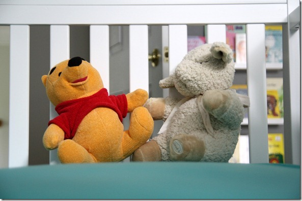 IMG_9017