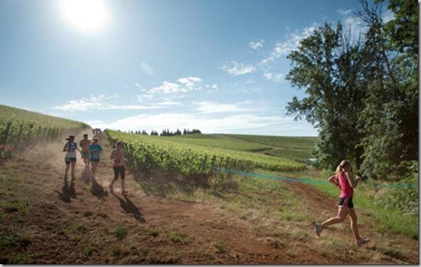 winecountryraces