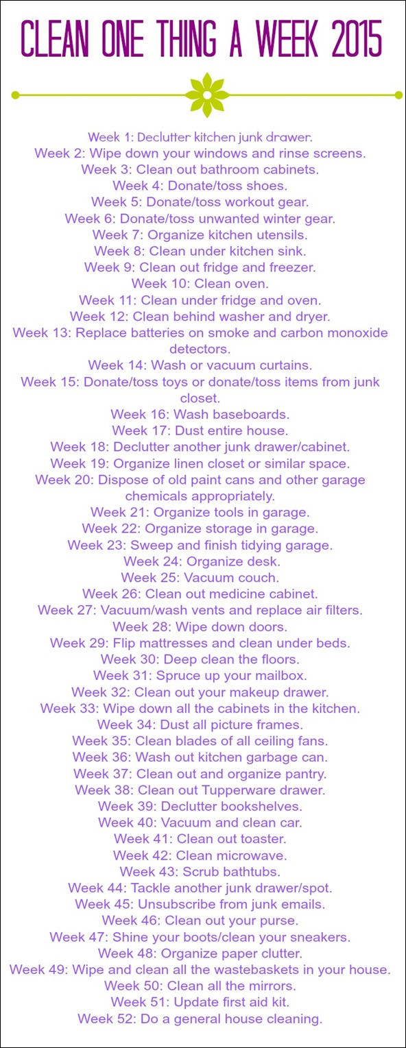 clean one thing a week 2015