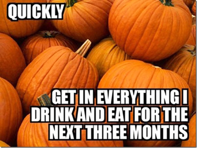 pumpkin-meme